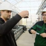An Innovative Clean Fuel of the Future: The Power of Algae
